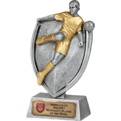Fusion Player Football Trophy